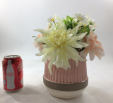 De grote Bonsai van de Kunstbloemen van de Grootte Ceramische