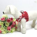 Hundekleidung-Weste mit Spitze-Zutaten überprüfte (hy107-1)