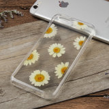TPU Handmade floral real pressionado colorido flores caso do telefone para iPhone Case