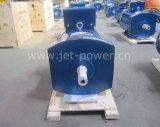 Alternator In drie stadia van de Borstel van de generator de Hoofd5kw 10kw 20kw 50kw