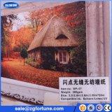 Papel de parede de tecido de alta qualidade não tecido, papel de parede não tecido