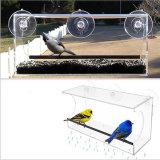 Sorveglianza di uccello divertente dell'alimentatore libero dell'uccello dall'interno della vostra casa