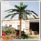 옥외 훈장 32f 인공적인 코코야자 나무