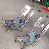 Pompa a ingranaggi rivestita del bitume del rotore del lobo dell'acciaio inossidabile