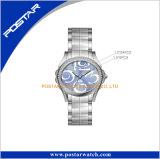 L'acier neuf de constructeur de montre de la Chine de type attache Madame montre