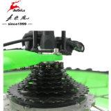 36Vリチウム電池の電気雪を循環させる緑の道は自転車に乗る(JSL039K-3)