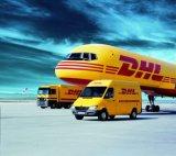 Верхние воздух, море и груз к двери с двойными ясными таможнями и тяглом. (DDU/DDP) Компания по транспортировке грузов от Китая к всемирно