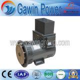 40kw Tfwシリーズブラシレス交流発電機