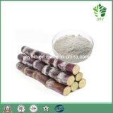 Extrato 98% Policosanol da cera do bastão de açúcar da fonte da fábrica
