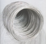 Het roestvrij staal rolde Naadloze Buizen/Pijpen/Buizenstelsel