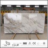 Arabescato Venato 건축 마루 Walling 훈장을%s 백색 대리석 건축재료