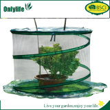La protection des plantes de jardin d'Onlylife sautent vers le haut la serre chaude de plastique de poivre de tomate
