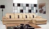 Echtes Leder-Sofa (T312)