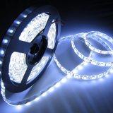 LEIDENE van de Decoratie van de leiden- Motie Sensor5050 12V Flex Lichte Strook