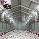 Diseñado a la exportación de Hangar Prefad móvil arrojar las tierras de cultivo de la casa de aves de corral con bajo coste