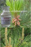 Faible prix purificateur d'air pur et naturel de l'aiguille de pin naturel de l'huile d'huile de parfum saveur des aliments de base huile essentielle d'huile