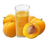 Het Concentraat van de Puree van de abrikoos