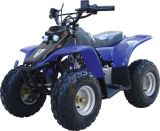 Cl50cc QUAD/ATV con i otheslines del CE (FST-50-A)