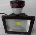 360 degrés Projecteur LED Capteur IRP Motion 10W/20W/30W/50W