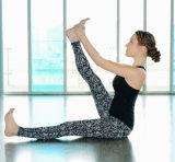 Ragazze che portano i pantaloni di nylon di yoga dello Spandex, abito all'ingrosso, ghette di yoga delle signore del nuovo modello