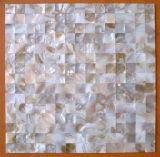 A decoração do mosaico da Shell (YBM2025)