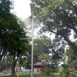 Gran cantidad de lúmenes 6W a 120W con protección IP65 Jardín LED Lámpara de calle solar integrada