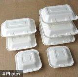 漂白された使い捨て可能なバガスの食糧荷箱