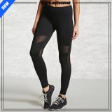 OEM Custom Women Fitness Compression Workout Leggings Breathable Pants Yoga