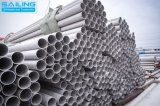 316L de naadloze Leverancier van Pipe&Tube van het Roestvrij staal in Wenzhou