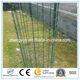 Сделано в поставщике Китая гальванизировал сваренную ячеистую сеть