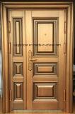 Segurança do melhor preço de aço exteriores da porta de ferro (EF-S068)