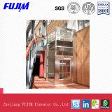 400kg capienza 0.4 m./S.A. Mulfunctional ed elevatore domestico della villa dell'elevatore di Exquistie Ineal