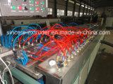 Dekoration-Profil-Produktionszweig Maschine 65 \ 132 PET-Belüftung-WPC hölzerner