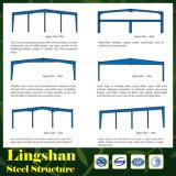 Almacén de dos pisos de la estructura de acero de Lingshan
