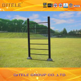 Strumentazione del campo da giuoco di forma fisica di ginnastica di Outdoor&Indoor (QTL-2703)
