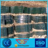 100 мм для Stablization Geocell почвы