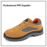 Zapatos de trabajo duro de acero ligeros de la punta y de la placa