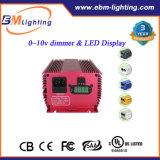 Hydroponic 1000W 860W 600W Dimming Mh / HPS Reator eletrônico para estufa