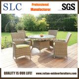 Jantar de vime mesas e cadeiras (SC-B6904)