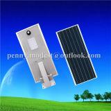 Réverbère solaire du système automatique DEL avec le détecteur de PIR (5W-120W)
