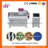 De kleine Werkende CNC van de Grootte Automatische Machine van het Glassnijden met MultiHoofden RF800m