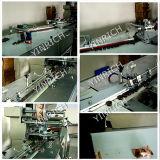 Automatischer Ausrichtungstransport und Kissen-Typ Verpackungsmaschine (DXD1000-1)