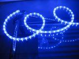 Indicatore luminoso di striscia flessibile della striscia 50m LED del LED