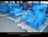 НА 2 вачуумных насосах этапа для электростанции