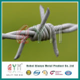 Sicherheits-Stacheldraht-Zaun-/Rasiermesser-Stacheldraht-Ineinander greifen-Zaun