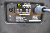 W8lm 8 Inch-Minizeile Reihe, Berufszeile Reihen-Lautsprecher