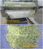 [و-2000] [ستينلسّ ستيل] فقاعات أوزون نباتيّ [وشينغ مشن], خس تنظيف آلة
