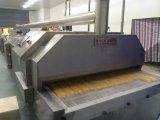 Mango, Morango IQF freezer, Túnel freezer