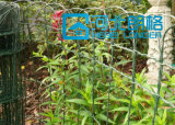 Blumen-Garten-Rand-Zaun-/Maschendraht