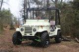 50-75km/H mette in mostra il Buggy, adulti ATV con 150cc/200cc